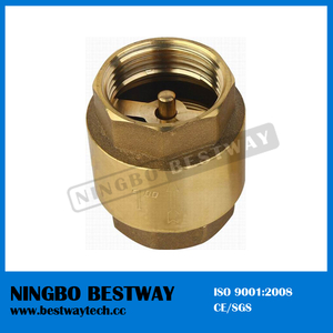 Brass Spring Check Valve Fast Supplier (BW-C02)