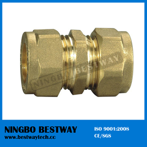 Female Brass Pipe Fittings Fast Supplier (BW-502)