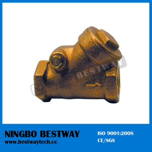 Y Strainer Brass Check Valve Manufacturer Fast Supplier (BW-C07)