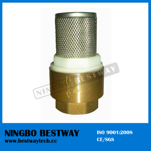 Brass Check Valve with Stainless Steel Strainer (BW-C09)