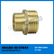 Metal Pipe Reducing Nipple Fitting (BW-636)