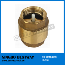 Hot Sale Brass Check Valve with Plastic Core (BW-C03)