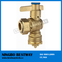 Hot Sale Straight Type Lockable Ball Valve Price (BW-L03)