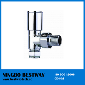 High Quality Brass Radiator Valve (BW-R06)