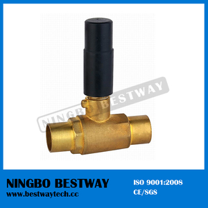 Hot Sale Built-in Ball Valve (BW-B59)