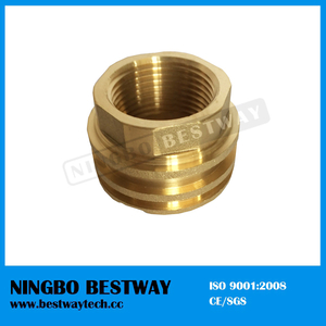 Male Thread Hexagonal PPR Fitting for Sale (BW-724)