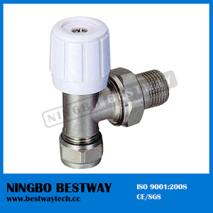 High Quality Radiator Valve Caps Price (BW-R08)