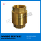 NPT Thread Vertical Type Lead Free Brass Spring Check Valve