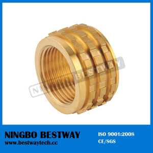 PPR Fitting Brass Insert Nut (BW-727)