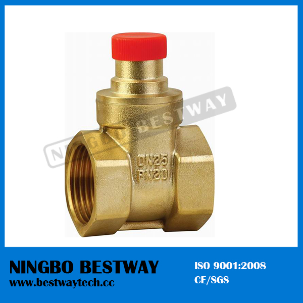 Brass OS Y Water Gate Valve (BW-G09)