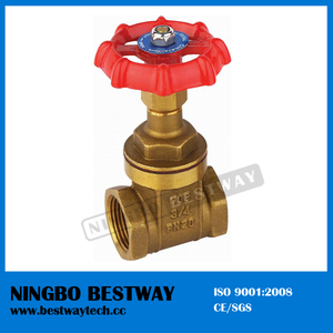 Brass 4 Inch Water Gate Valve (BW-G03)