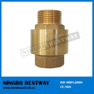 NPT Thread Lead Free Brass Spring Check Valve (BW-C13)