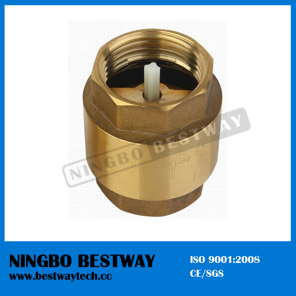 Brass Spring Check Valve with Plastic Core
