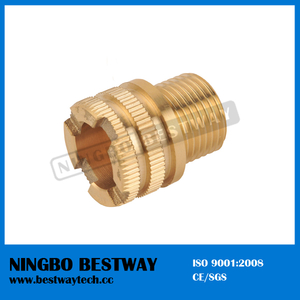 High Quality Hexagon Brass PPR Fitting (BW-726)