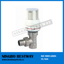 Hot Sale Standard Thermostatic Radiator Valve (BW-R01)
