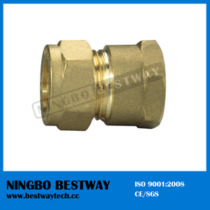 High Quality and Unique Design Brass Pipe Fitting (BW-501)
