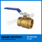 Brass Ball Valve Price (BW-B05)